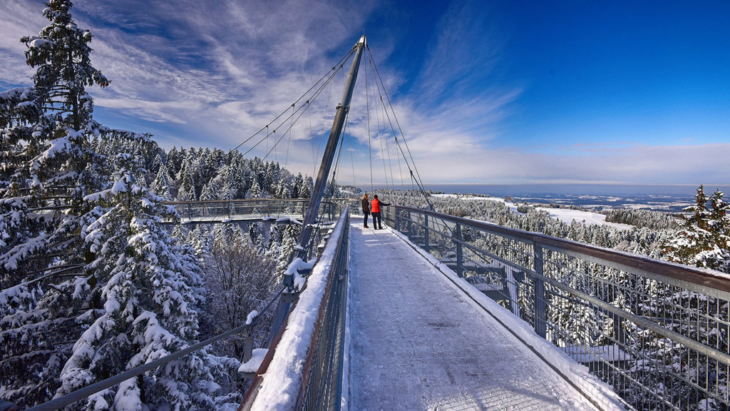 Winter C Skywalk Allgäu