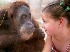Hautnahe Begegnung zwischen Mensch und Tier c Zoom Erlebniswelt