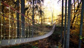 Hängebrücke im Binger Wald - Suspension bridge in the Bingen forest