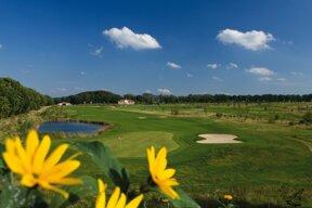 Golfplatz III