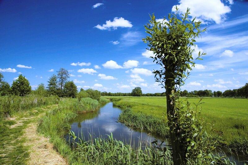 Nationalpark De Meinweg in der Region Limburg