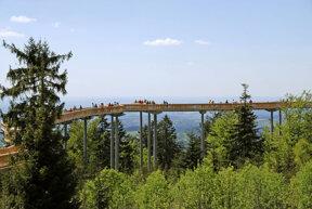 Waldwipfelweg 2