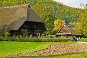 Bauernhöfe Todtnau
