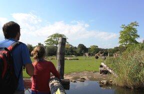 Ausblick auf die Kiwara-Savanne c Zoo Leipzig