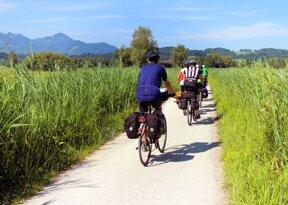 Radfahrer ohne c pixabay