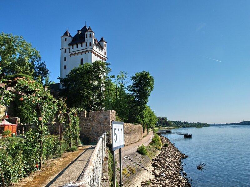 Eltville Kurfürstliche Burg und Rhein