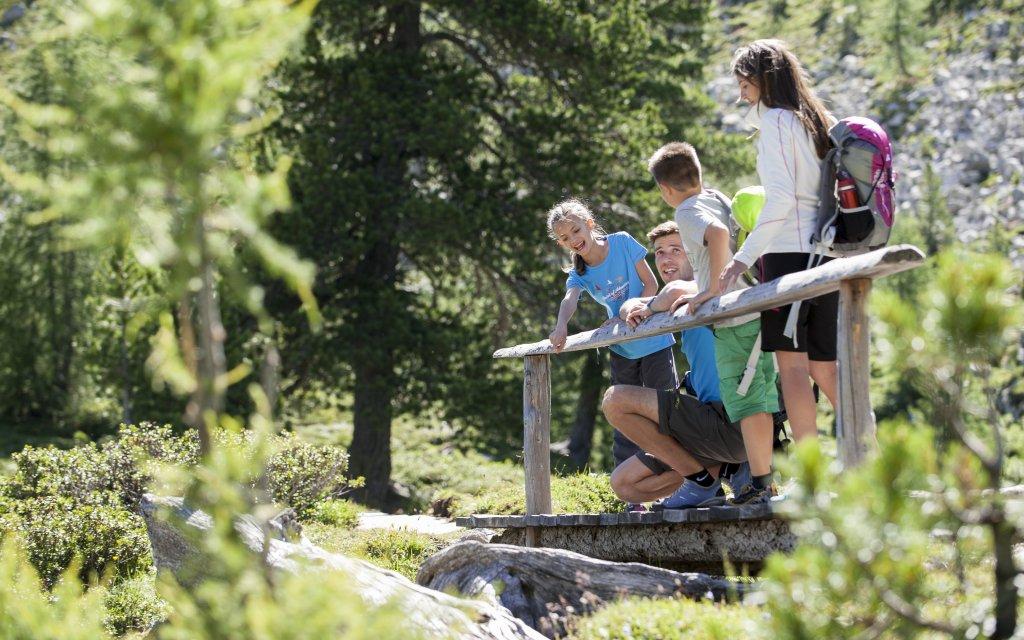 Familie in grüner Landschaft beim Wandern