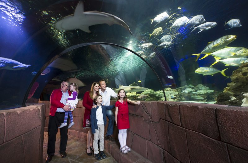 Familie im SEA LIFE Speyer