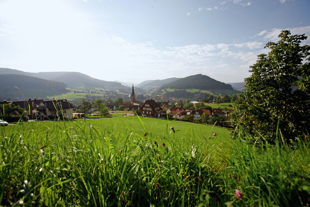 Blick über Baiersbronn
