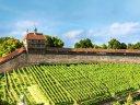 Fachwerk, Wein und die Esslinger Burg