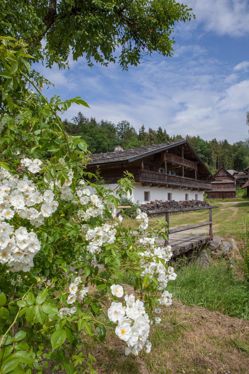 Blumen Haus c Museumsdorf Bayerischer Wald