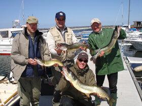 Hausgemachter Räucherfisch und Ozeaneum