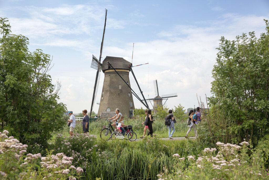 Windmühle in Ridderkerk inmitten vom Grün