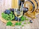 Es lebe der Wein zwischen Neckar und Rhein