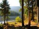 Berge, Bärwurz und eine Fahrt zum Arbersee