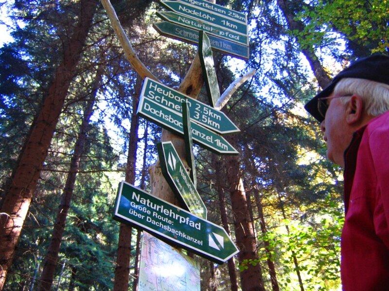 Wegweiser in Thüringer Wald