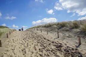 Beach - 10013 c NBTC