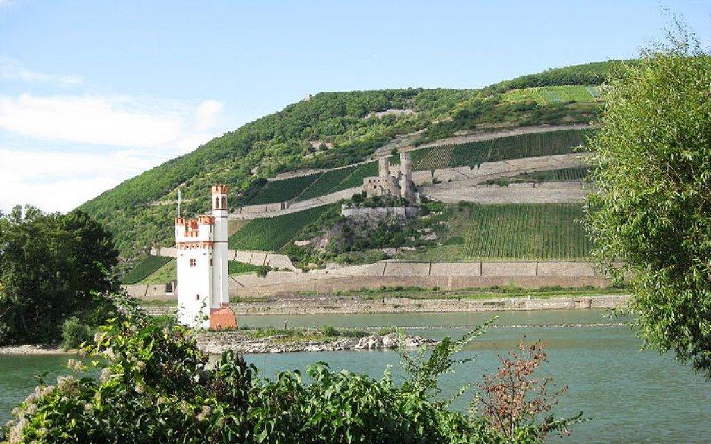 Binger Loch mit Mäusturm und Burgruine Ehrenfels