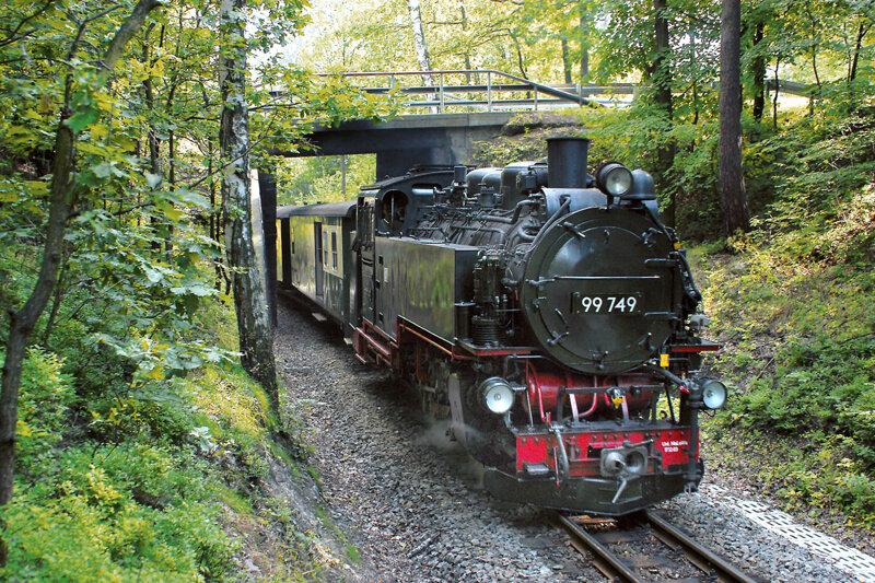 Zittauer Schmalspurbahn im Wald
