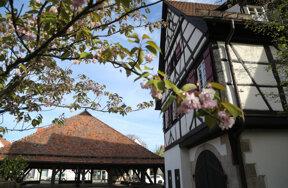 Keltern Metzingen Foto Stadt Metzingen