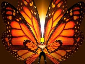Butterfly © Friedrichstadt-Palast Berlin