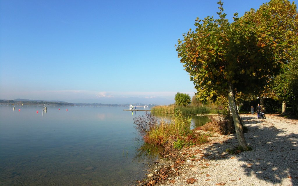 Ufer des Lago Maggiore