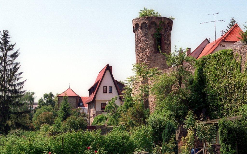 Sauermilchhaffe Stadtmauer in Wiesloch