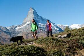 Paar mit Hund vor dem Matterhorn