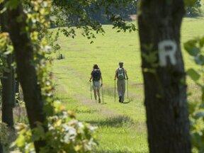 Rennsteigwandern c Oberhof Tourismus