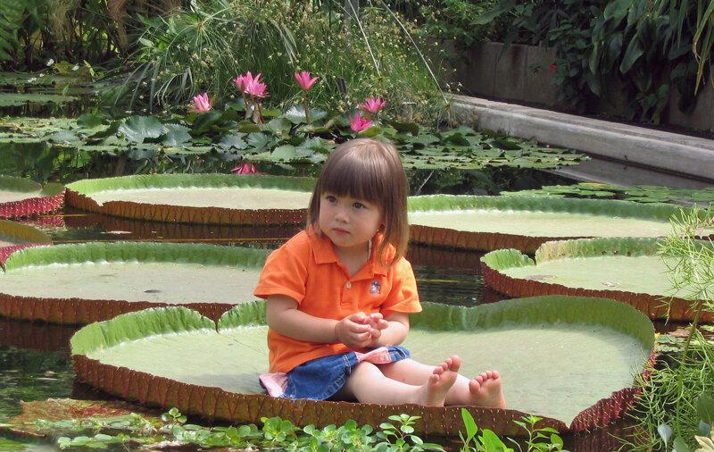 Kind im botanischen Garten Liberec