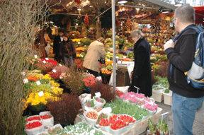 Tulpen auf dem Markt