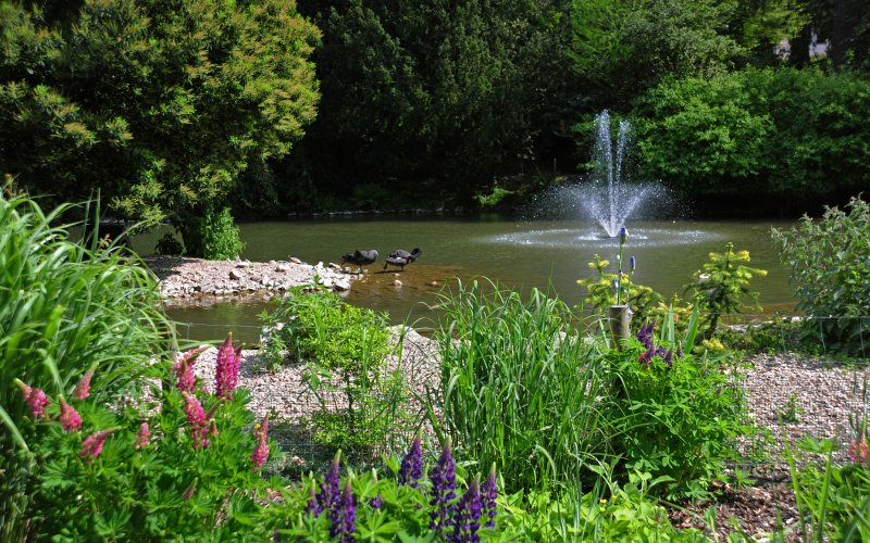 Kurpark Badenweiler