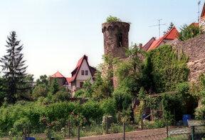 Sauermilchhaffe Stadtmauer
