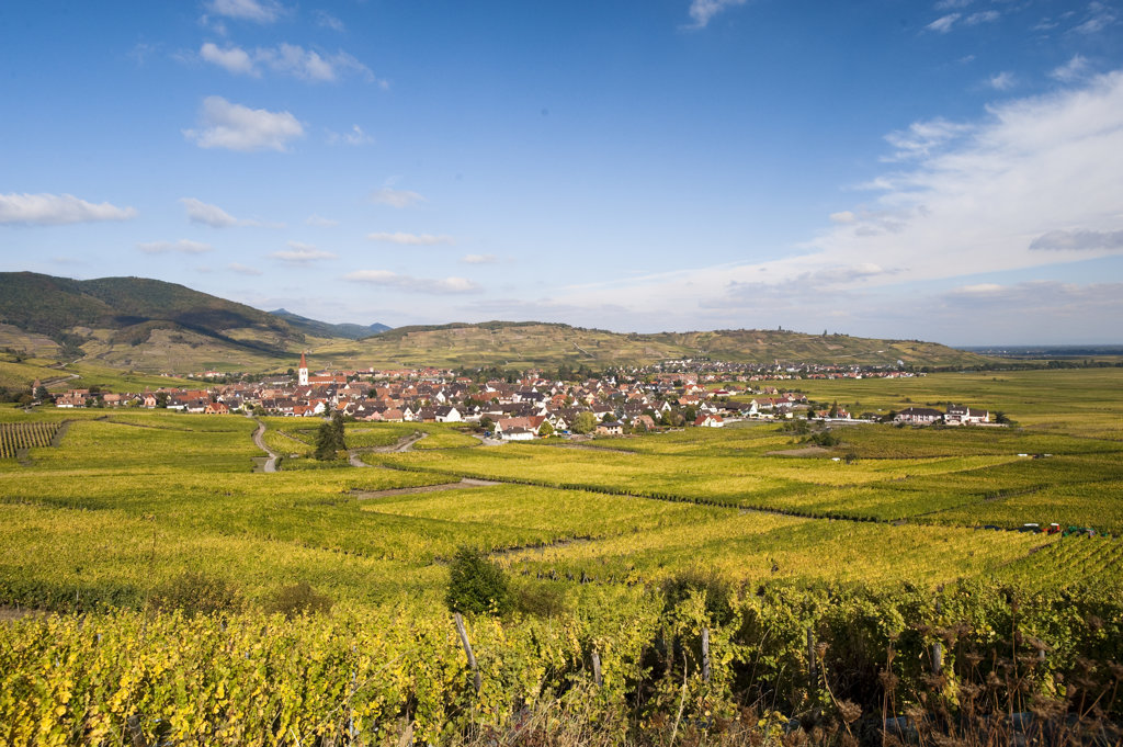 Dorf im Elsass zwischen Weinbergen