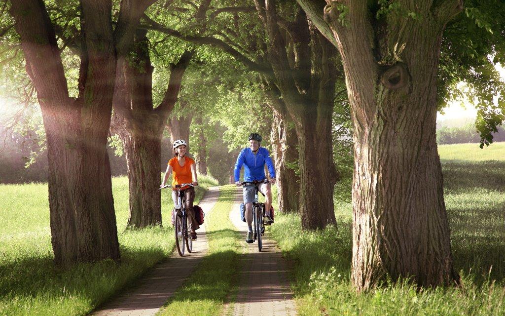 Radfahrer in Mecklenburg-Vorpommern