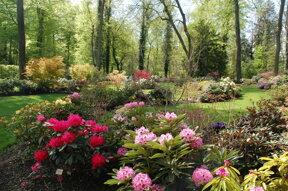 Mulhouse, Parc zoologique et botanique, Jardin des rhododendrons c OTC Mulhouse