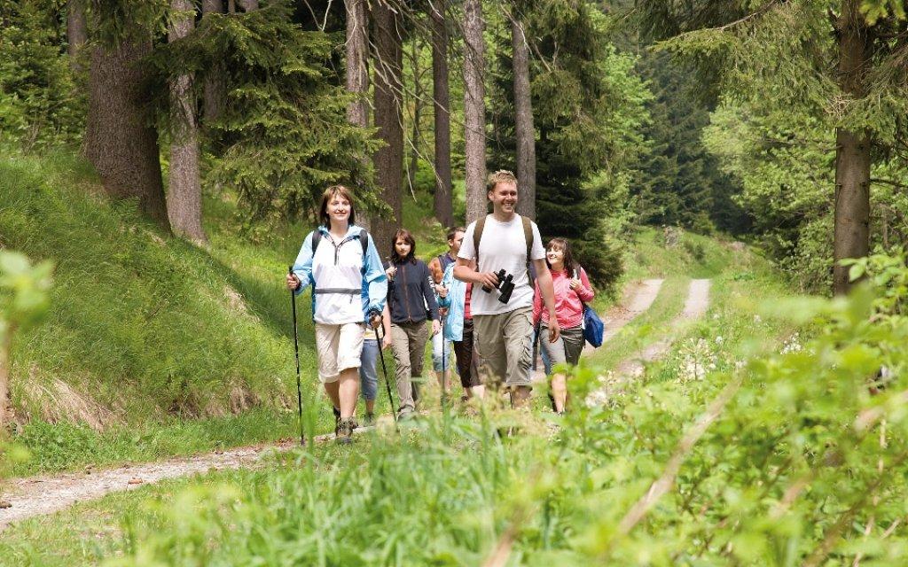 Familie wandert im Wald im Erzgebirge