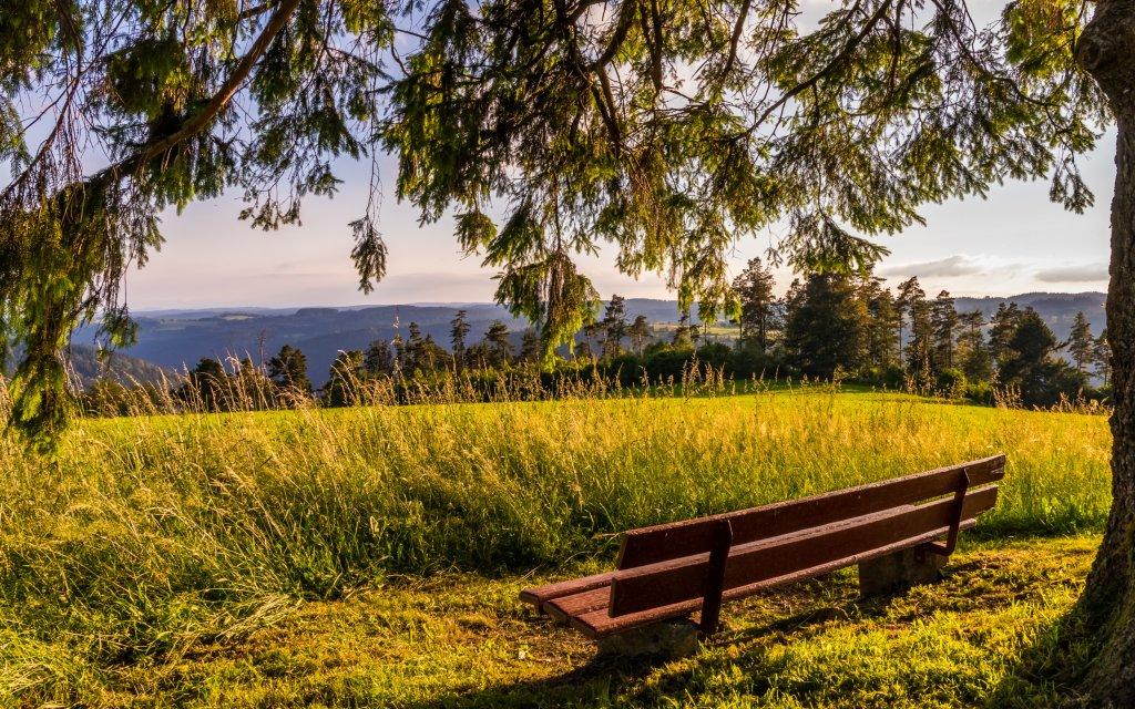 Bank mit Ausblick in den Schwarzwald