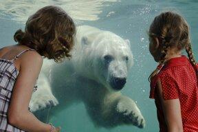 Yukonbay-Unterwasserwelt-Erlebniszoo-Hannover©Erlebnis-Zoo Hannover