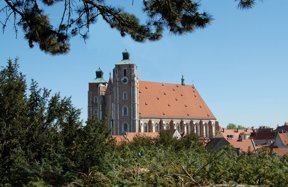 Münster fern