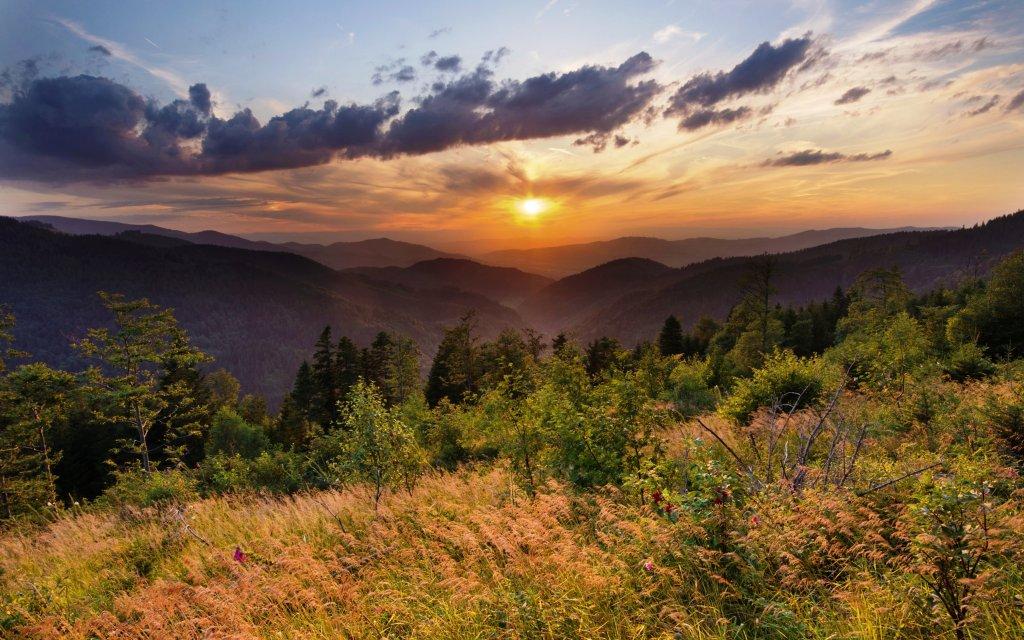 Schwarzwald Natur mit Sonnenuntergang