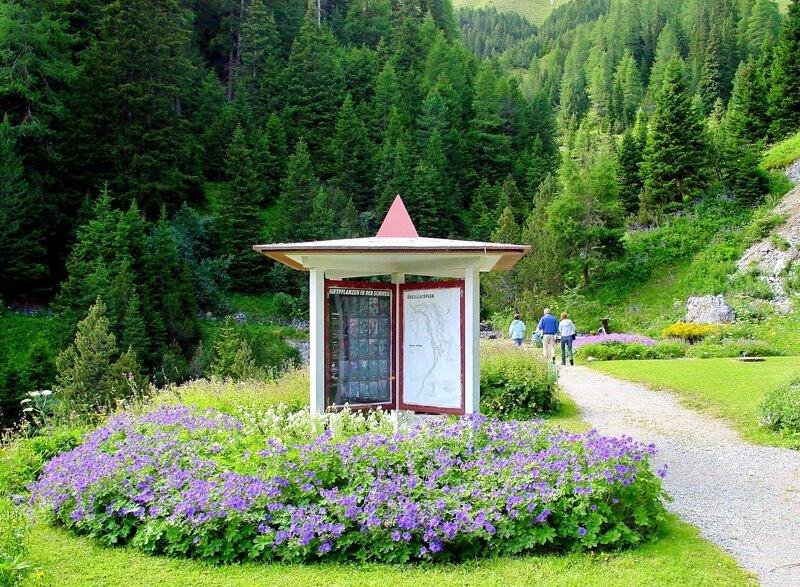 Botanischer Alpengarten des Snow & Mountain Resorts Schatzalp