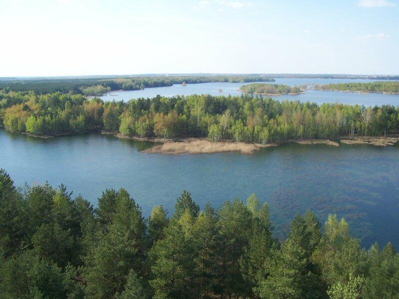 Ausblick vom  Aussichtsturm Senftenberger See