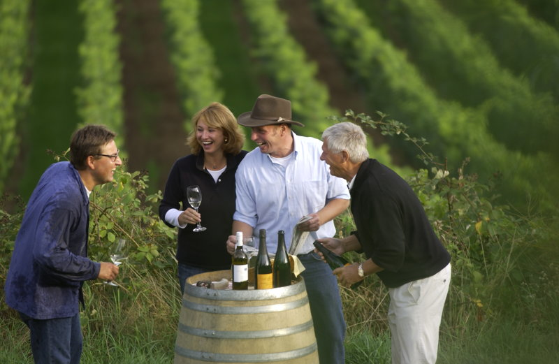 Gruppe Touristen bei einer Weinprobe in den Weinbergen