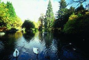 Park kleiner See