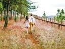 Wellnessauszeit in der romantischen Heide