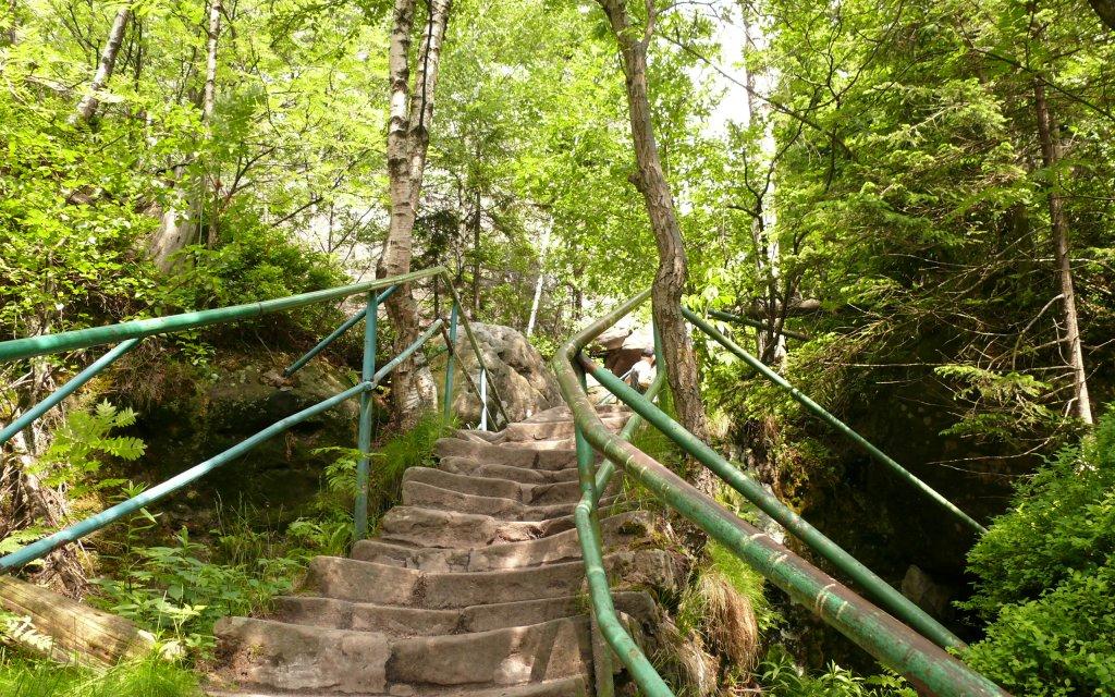 Waldstieg in Niederschlesien
