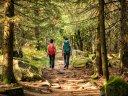 Wellness, Wandern und Genuss im urigen Pfinztal