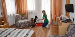 Zimmer mit Hund (2)