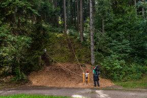 Kletterseile im Wald bei Höchenschwand